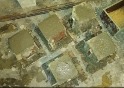 Bacteria Concrete